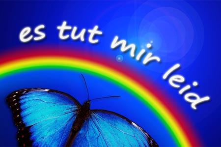 Es tut mir Leid - Bild mit Regenbogen und Schmetterling