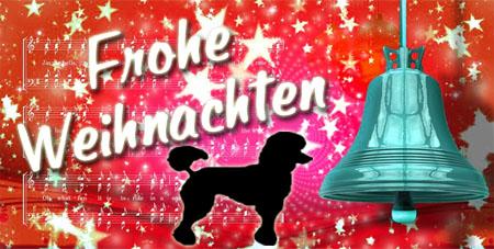 Ein Pudel wünsche frohe Weihnachten mit Glock und Spruch