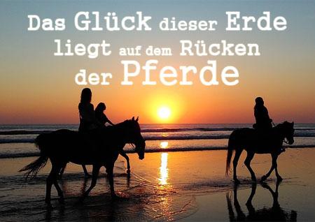 Bild mit Spruch alles Glück der Erde liegt auf dem Rücken der Pferde