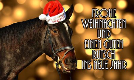 Lustige Weihnachtsgrüße mit Pferd