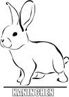 Malvorlage Kaninchen