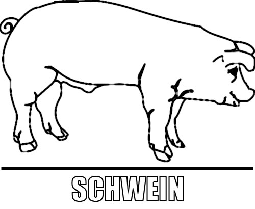 Malvorlage Schwein zum Ausdrucken