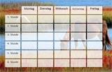 Pferde Stundenplan Vorlage